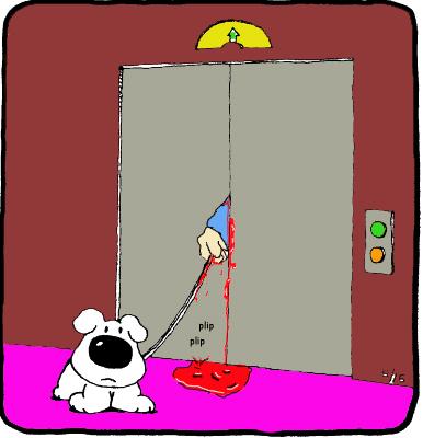 ziggy-elevator
